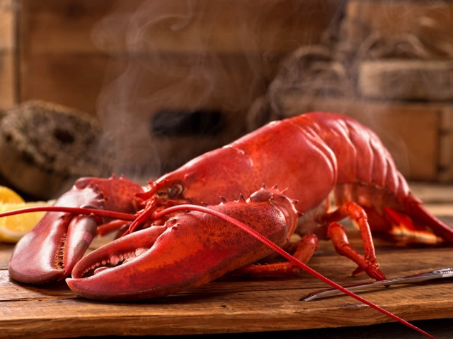 Cooked Lobster (2 lb)